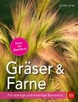 Gräser & Farne.