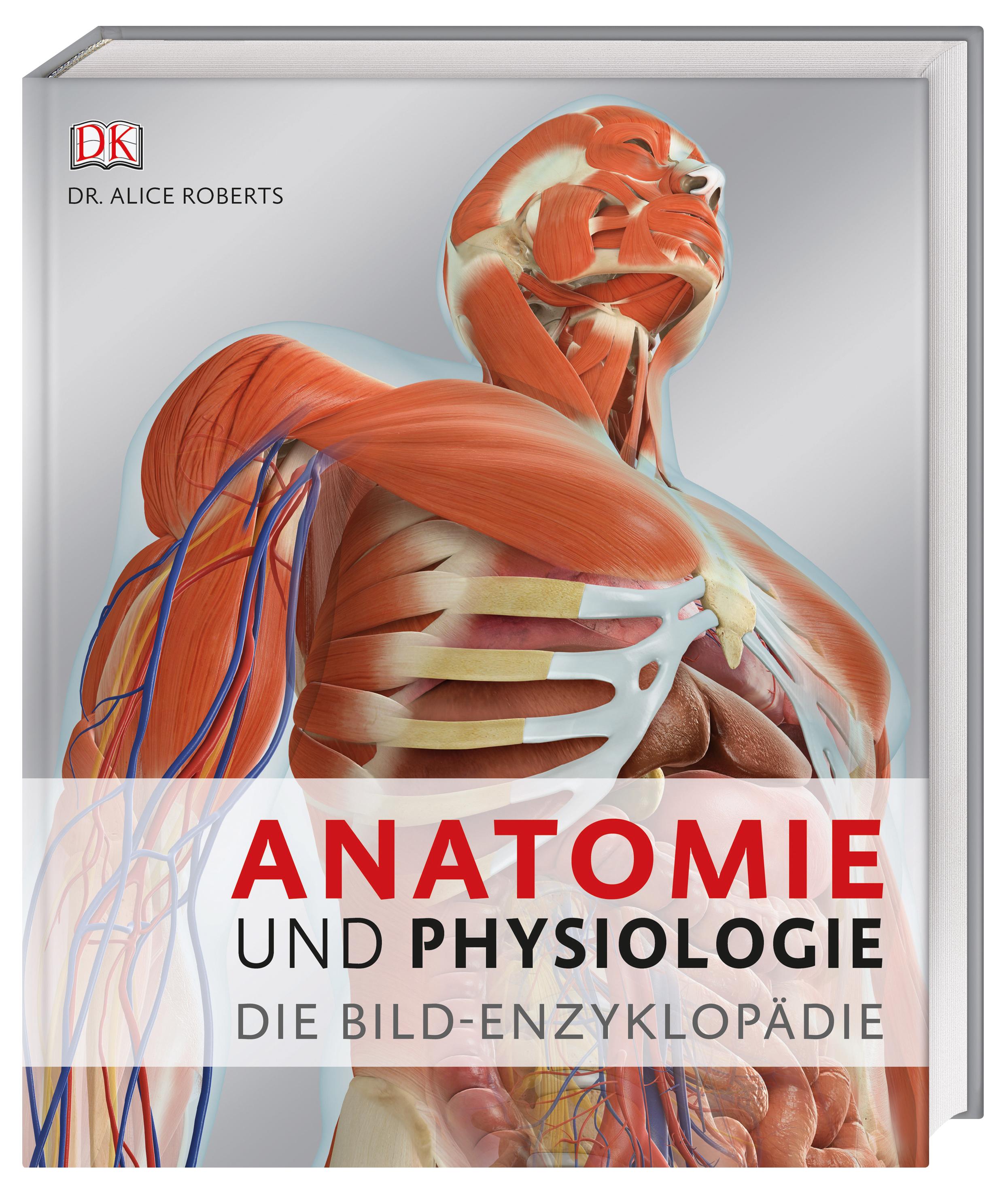 Großartig Anatomie Und Physiologie Der Praxis Fotos - Menschliche ...
